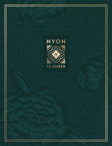 nyon-e-brochure-cover-singapore